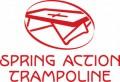 Spring Action logo